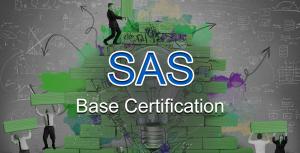 SAS-300x241