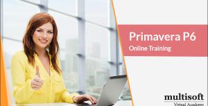 Primavera-P6-Online-Training
