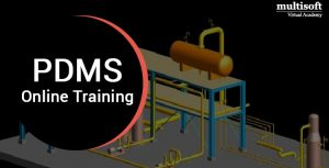 PDMS Online Course